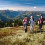 Wandern Saalbach grasberge