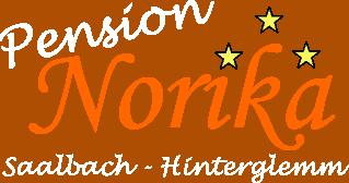 logo pension norika white